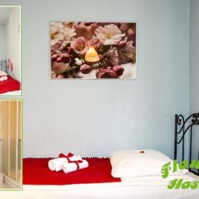 Hostelek és Ifjúsági Szállások - Hostel Flower