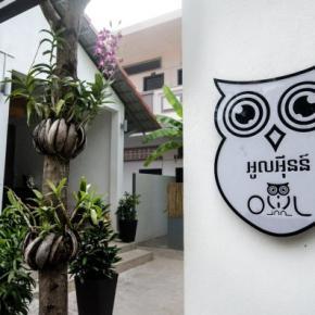Hostelek és Ifjúsági Szállások - Owl Inn