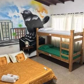 Hostelek és Ifjúsági Szállások - Paisa City Hostel