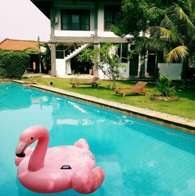 Hostelek és Ifjúsági Szállások - Freedom Hostel Bali