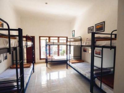 Hostelek és Ifjúsági Szállások - Hostel Uluwatu Backpackers