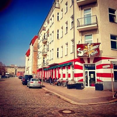 Hostelek és Ifjúsági Szállások - Sunflower Hostel Berlin