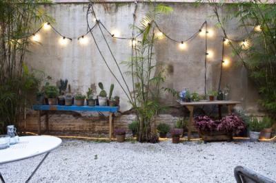 Hostelek és Ifjúsági Szállások - The Urban Jungle Hostel